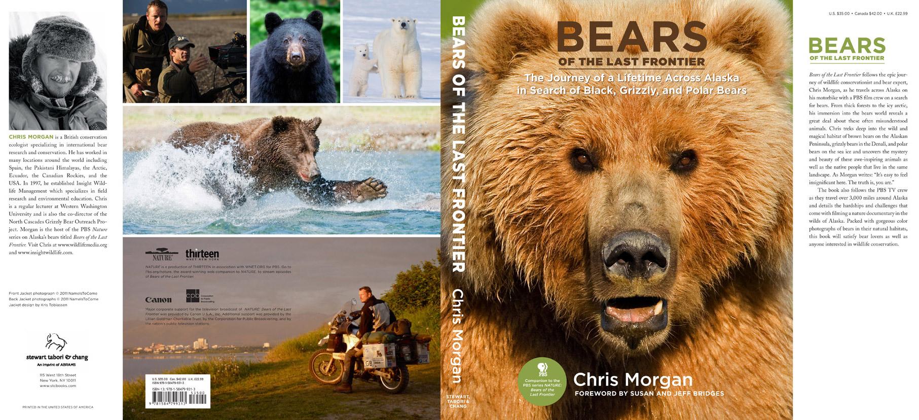 bears-portfolio-1